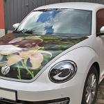 Designfolierung Beetle Hundefoto