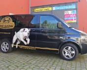 VW-Transporter - Designfolierung