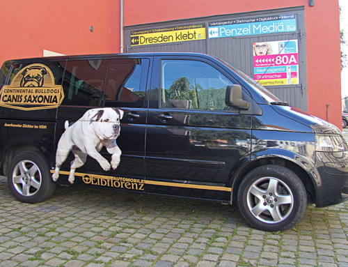 VW-Transporter
